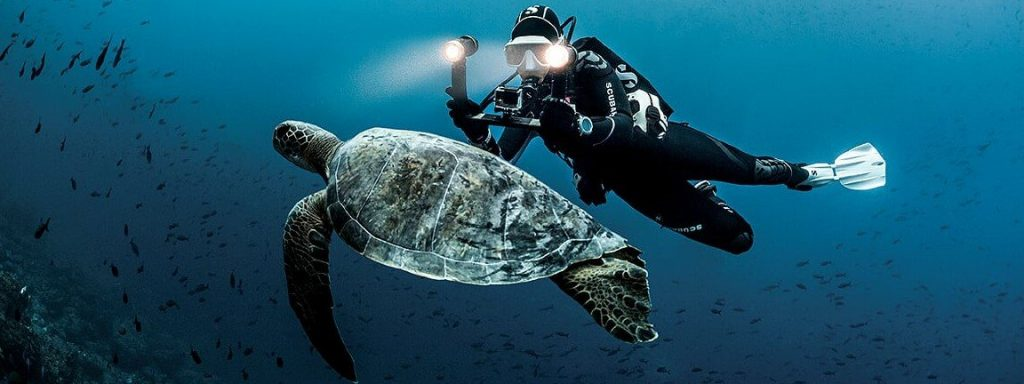 Diver and Turtle edited 1200x 1024x384 - The ultimate 3 Scuba Diving packages for Malaysians